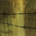 Photos: Safety net.......