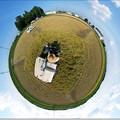 写真: 地球丸刈り大作戦