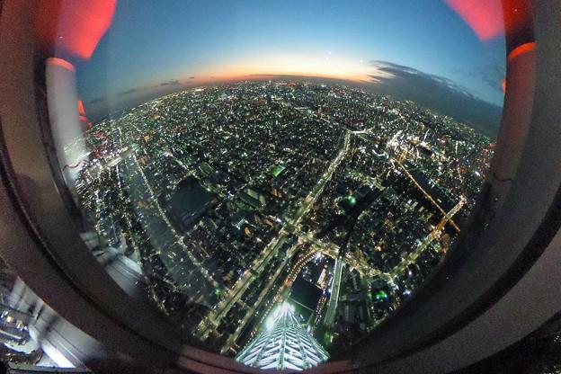 写真: 東京スカイツリー