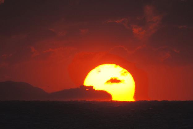 写真: 伊良湖岬のだるまさん