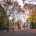 Photos: 朝の公園0074hayasi