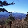 写真: 小仏城山からの富士山