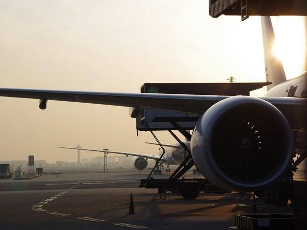 Photos: 空港の朝