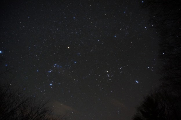Photos: 冬の星座