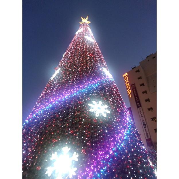 基町クレド・パセーラ クリスマスツリー