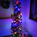 写真: 我が家のクリスマスツリー