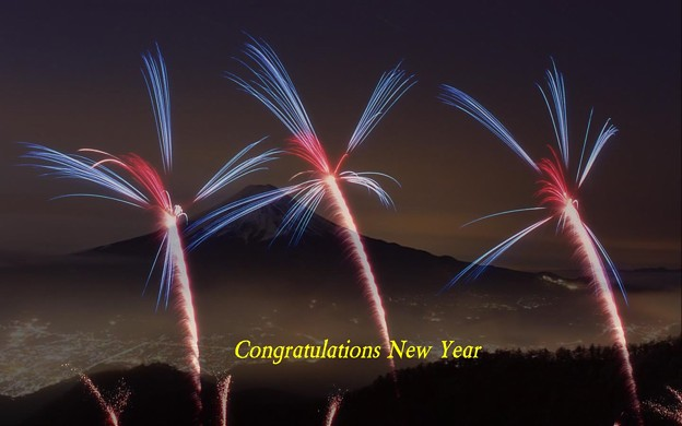 Congratulations New Year(3)