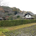 写真: 横溝屋敷