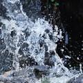 写真: 水飛沫