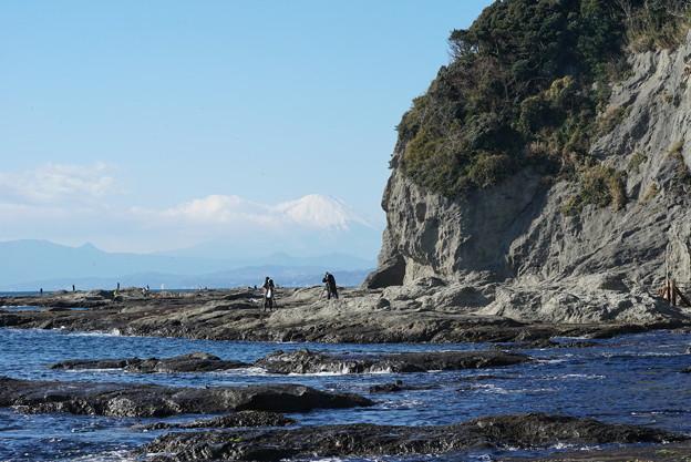 冬の江の島