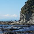 写真: 冬の江の島