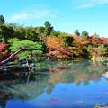 写真: 日式庭院