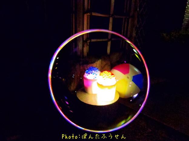 写真: 1504125346_8