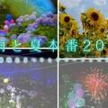 Photos: 1505657656_41