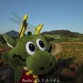 写真: 1506781923_76
