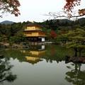写真: 金閣寺 (3)