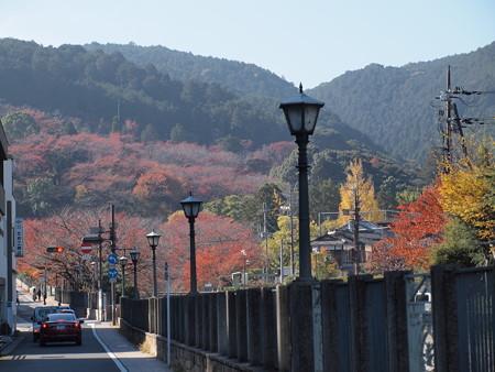三井寺駅前の紅葉