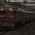 EF81カシオペア回送 東北本線西川口駅03