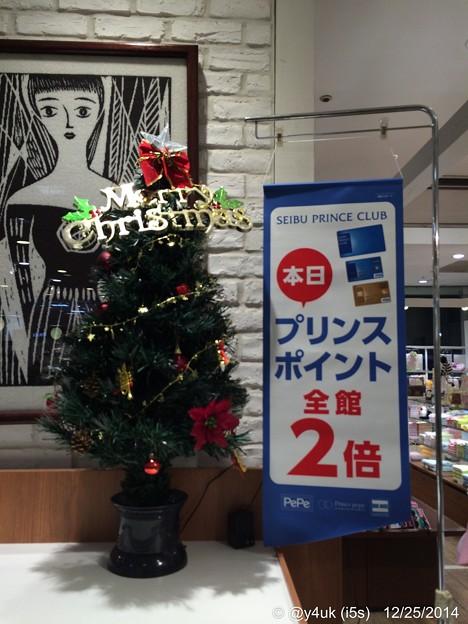 Photos: Christmas Tree Point~2倍