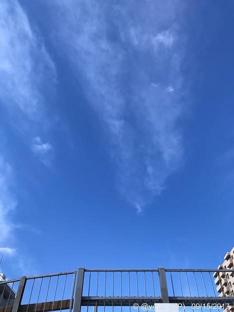 Photos: 高い秋空、柵を超えろ ~autumn sky