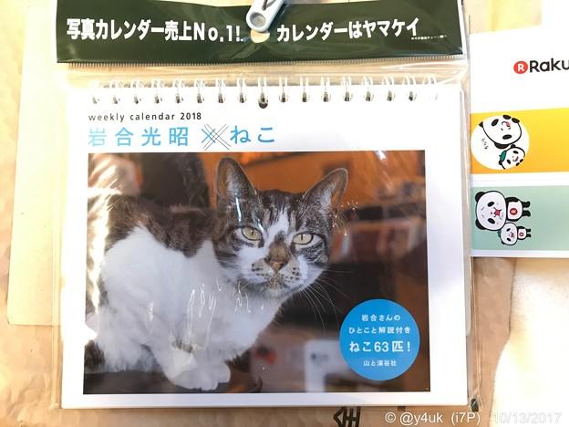 岩合光昭さん週めくりも届いたにゃあ!~ねこカレンダー~毎週悶絶身体がもたない生きる支え(=^ェ^=)