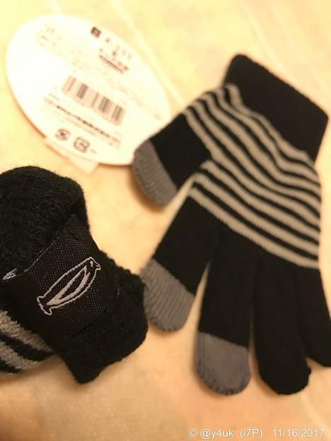 Photos: 2℃~ペンギンがいた!~スマホ手袋~昨年買った~今年初使用~寝ながらiPad用+就寝時防寒用グッズの1つ他5武装