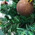 写真: Xmas Tree~golden ball~黄金に輝く金玉