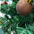 Photos: Xmas Tree~golden ball~黄金に輝く金玉