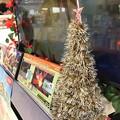 写真: Xmas TV Tree ~黄金に輝くツリー
