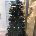 Xmas Tree in the shop