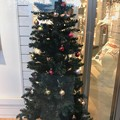 Xmas Tree in the shop