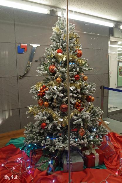 Photos: Xmas Tree presents [GRD mix]
