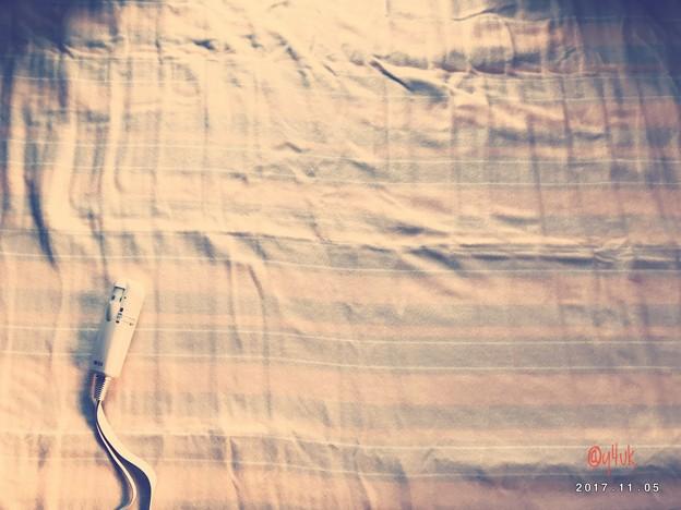 Photos: 暖かい電気毛布~貴重な長い全面式~破けたから新調して冬必須