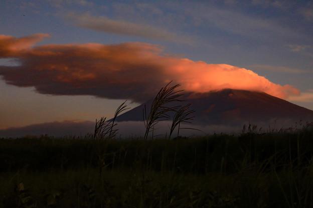 写真: 夜明けのビコーン