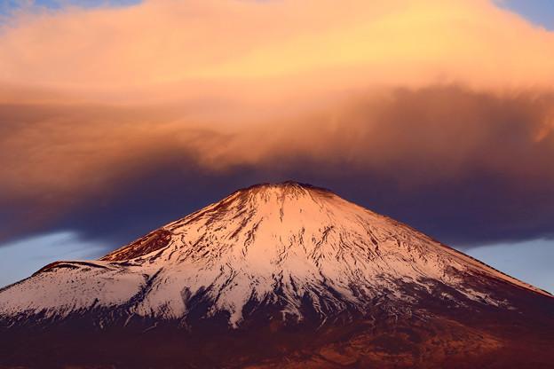 紅富士の時