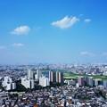 写真: 快晴の川崎 (4)