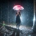 写真: 魔法の雨-召喚された私-