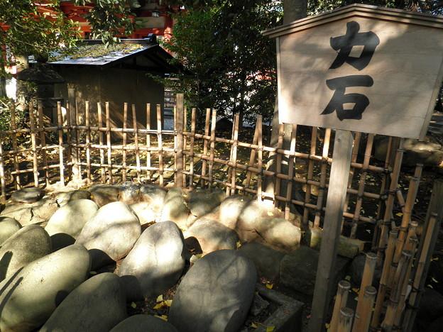 世田谷線:宮の坂駅界隈_世田谷八幡宮-08力石