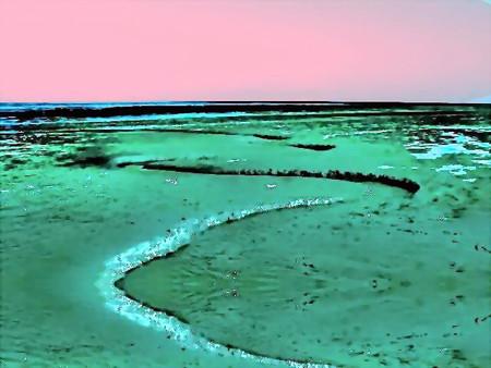 tidal flat-02