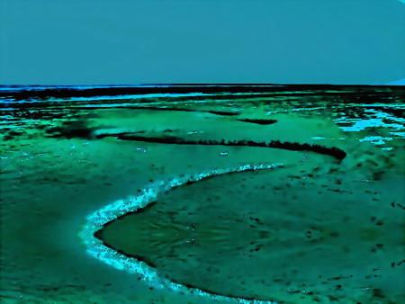 tidal flat-01