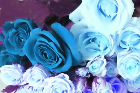 薔薇-01b(2)