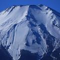 写真: 登山道