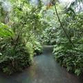 ガラスマオの川