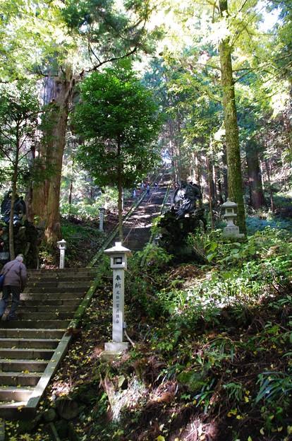最乗寺奥の院への石段