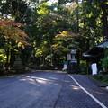 Photos: 最乗寺