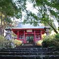 Photos: 最乗寺仁王門