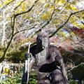 Photos: 弁財寺の石仏様