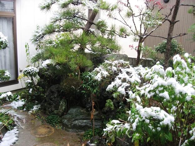 我が家の初雪-2