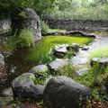 アイルランド庭園