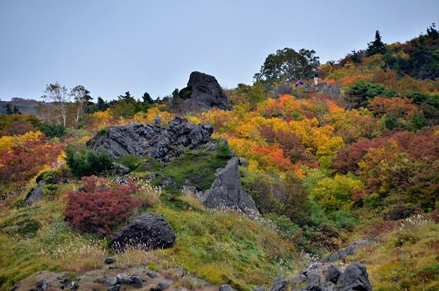 岩と紅葉~人がいました